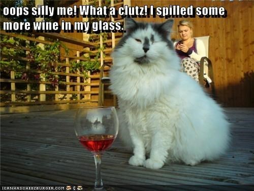 a picture of a cat with a class of red wine.