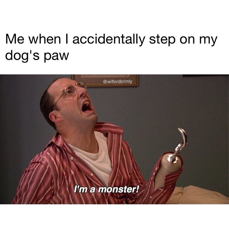 "Funny meme featuring Buster from Arrested Development shouting ""I'm a monster"" to illustrate the feeling that occurs when stepping on your dog's paw."