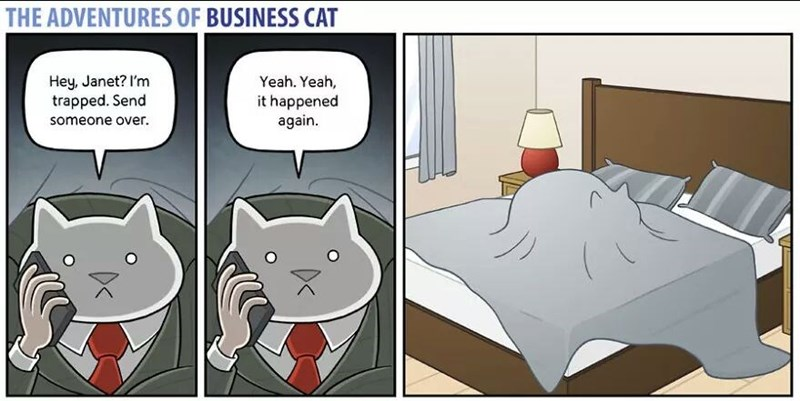 The Adventures of Business Cat Cartoon trapped again under his own blanket