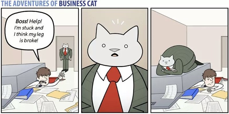 The Adventures of Business Cat Cartoon - employee complains of problem, cat sits on top of it all.