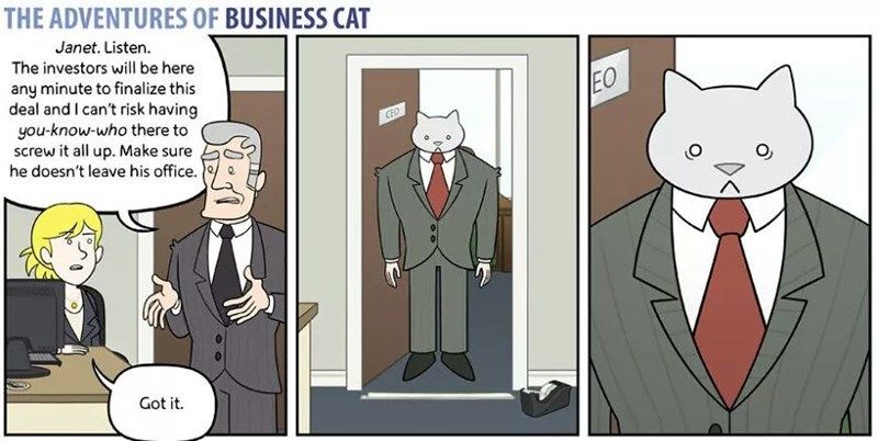 The Adventures of Business Cat Cartoon sad that he isn't in on the big meeting