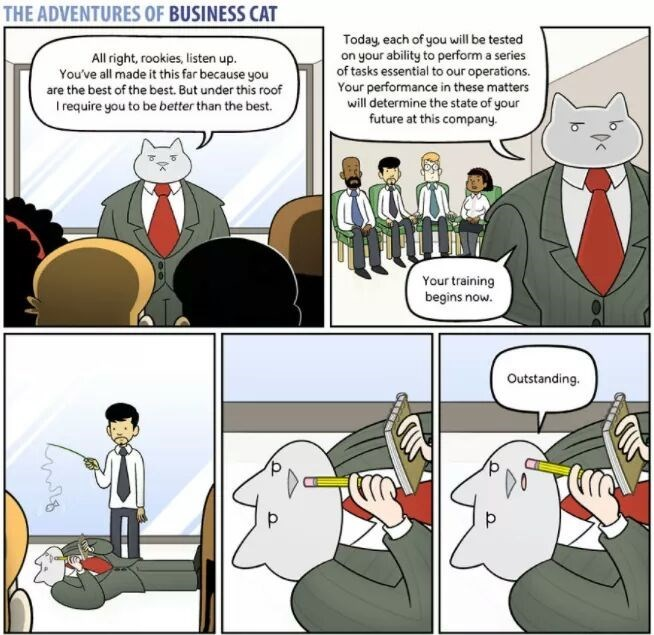 The Adventures of Business Cat Cartoon in team bonding experience