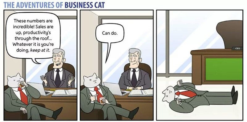 business cat cartoon napping on the floor