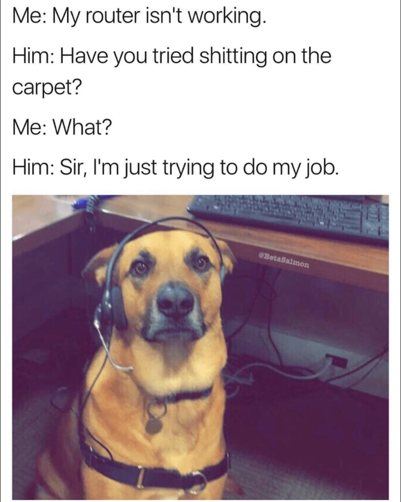 Wednesday meme Dog Tech support about taking shit on the carpet when the router doesn't work.