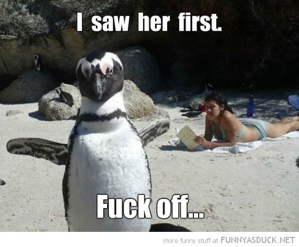 Photo caption - I saw her first Fuck of... more funny stuff at FUNNYASDUCK. NET