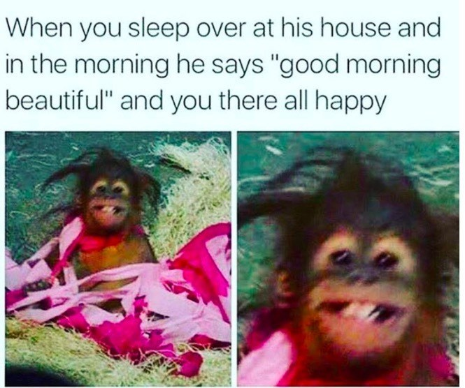 meme about being told you're beautiful when you wake up with pic of wild haired monkey smiling