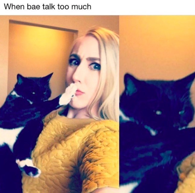 meme about shutting up bae with pic of cat putting its paw on a woman's mouth