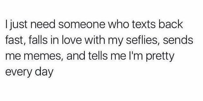 Text - I just need someone who texts back fast, falls in love with my seflies, sends me memes, and tells me I'm pretty every day