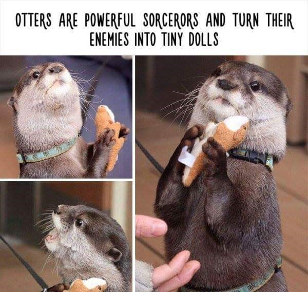 Mammal - OTTERS ARE POWERFUL SORCERORS AND TURN THEIR ENEMIES INTO TINY DOLLS