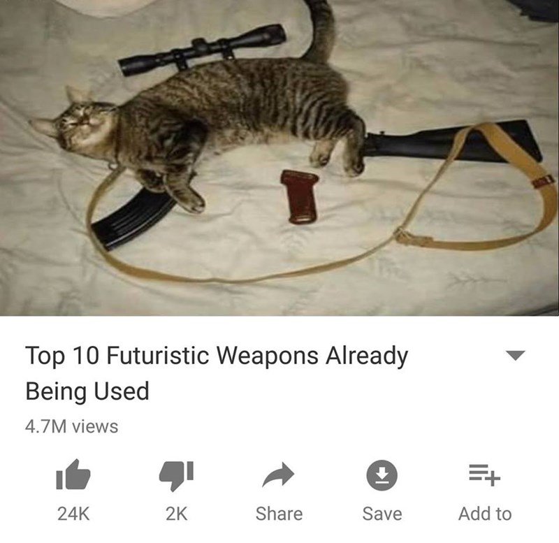 Funny Youtube meme about top 10 futuristic weapons that already exist, cat made to look like a rifle.