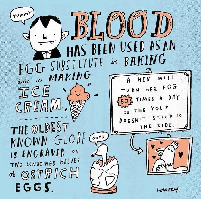 Cartoon - BIOOD YummY HAS BEEN USED AS AN ВАКING EGG SUBSTITUTE im MAKING amD IN A HEN WILL ICE CREAM, TVRN HER EGG 503 TIMES A DAY So THE YoL k THE OLDEST KNOWN GLOBE IS ENGRAVED DOESN'T S Tick To THE SIDE 00PS ON TWo CONJOINED HALVES ot OSTRICH EGGS oWERY