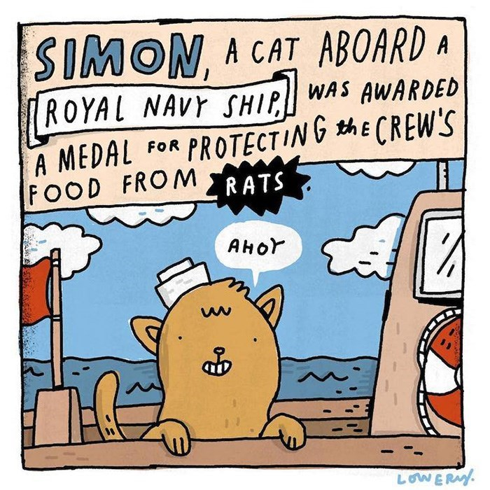 Cartoon - SIMON A CAT ABOARD A {ROYAL NAVY SHIP WAS AWARDED PROTECTING ECREW'S A MEDAL FOOD FROMRATS FOR Анor LOWERAY