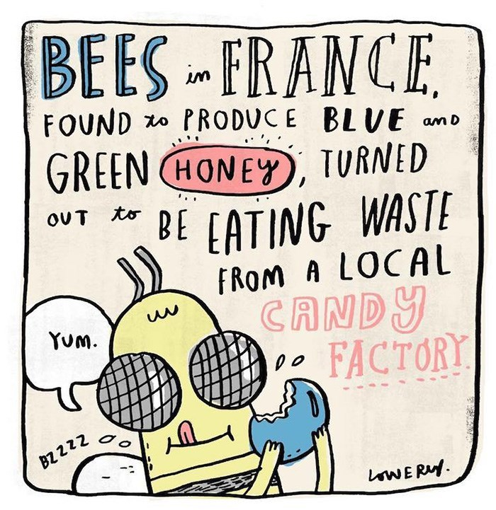 Font - BEES FRANCE FOUND PRODUCE BLVE am D GREEN HONEY TURNED OUT to DE EATING WASTE FROM A LOCAL CANDY FACTORY Yum BZ 2 2Z WER