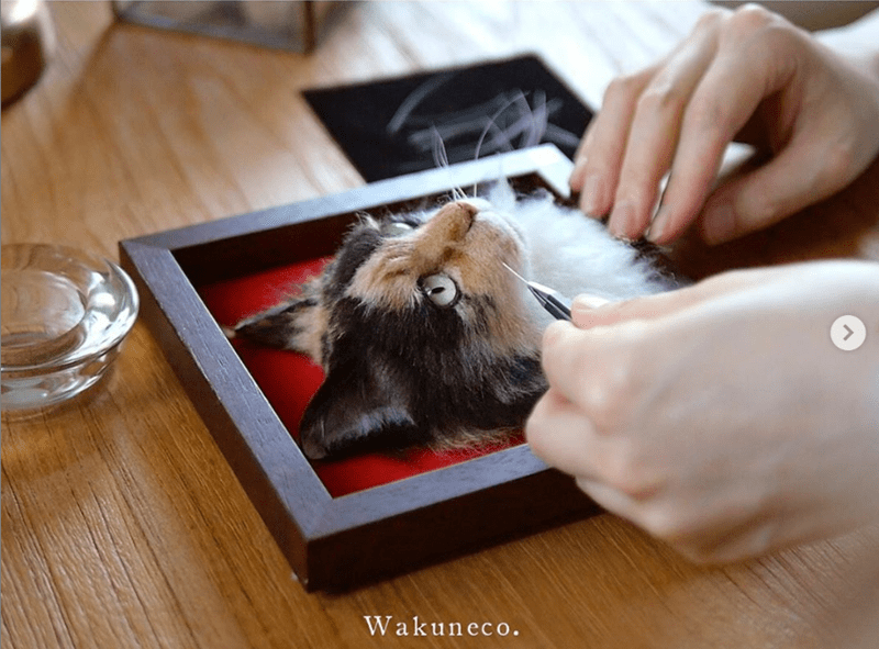 cat art portraits Cats animals - 9049605