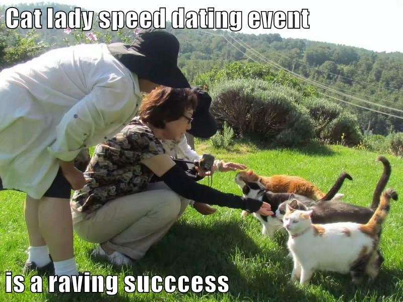Speed ​​Dating Funny meme