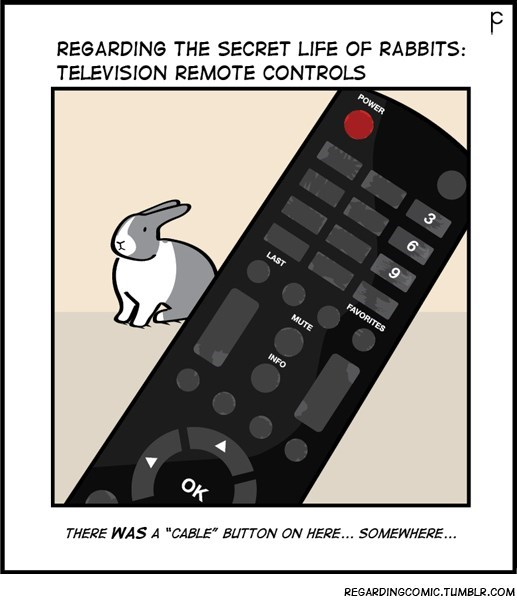 "Text - P REGARDING THE SECRET LIFE OF RABBITS TELEVISION REMOTE CONTROLS POWER 3 LAST FAVORITES MUTE INFO OK REGARDINGCOMIC.TUMBLR.COM THERE WAS A ""CABLE"" BUTTON ON HERE... SOMEWHERE..."
