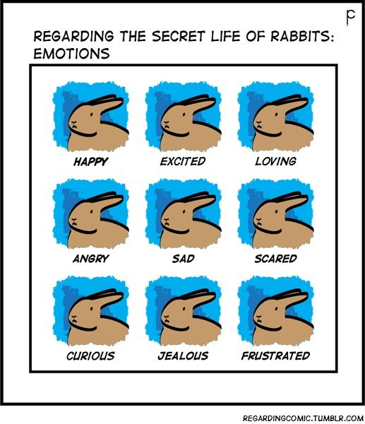 Cartoon - REGARDING THE SECRET LIFE OF RABBITS: EMOTIONS HAPPY EXCITED LOVING ANGRY SAD SCARED CURIOUS JEALOUS FRUSTRATED REGARDINGCOMIC.TUMBLR.COM