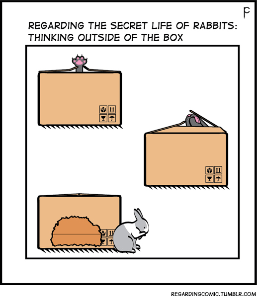 Text - REGARDING THE SECRET LIFE OF RABBITS: THINKING OUTSIDE OF THE BOx REGARDINGCOMIC.TUMBLR.COM