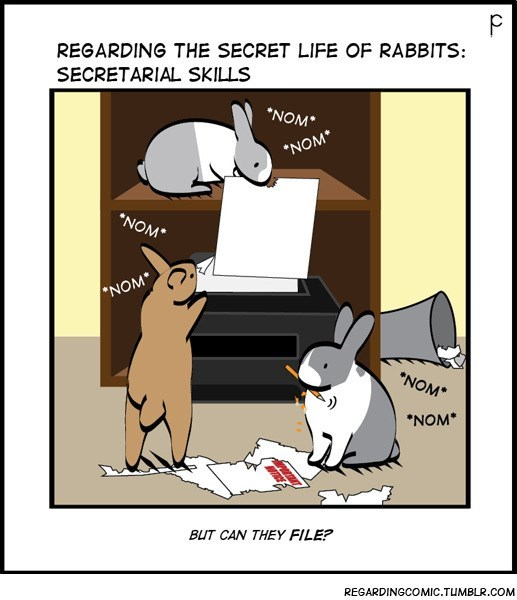 "Cartoon - REGARDING THE SECRET LIFE OF RABBITS: SECRETARIAL SKILLS NOM* NOM NOM NOM NOM* ""NOM* BUT CAN THEY FILE? REGARDINGCOMIC.TUMBLR.COM"