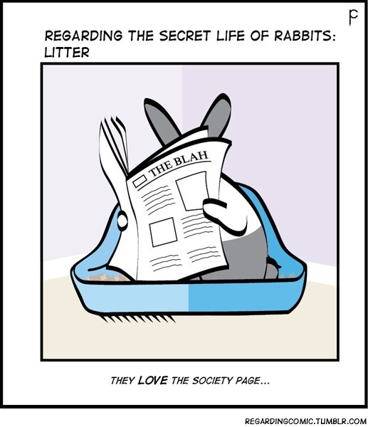 Cartoon - REGARDING THE SECRET LIFE OF RABBITS: LITTER THE BLAH THEY LOVE THE SOCIETY PAGE... REGARDINGCOMIC.TUMBLR.COM
