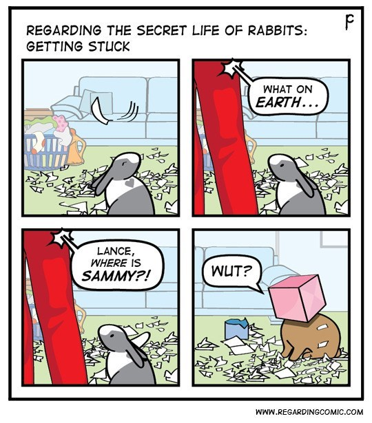 Comics - P REGARDING THE SECRET LIFE OF RABBITS: GETTING STUCK WHAT ON EARTH... LANCE WHERE IS WUT? SAMMY?! WWw.REGARDINGCOMIC.COM