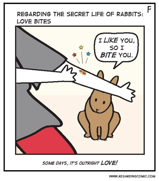 Cartoon - F REGARDING THE SECRET LIFE OF RABBITS: LOVE BITES I LIKE YOU, SO I BITE YOU. SOME DAYS, IT'S OUTRIGHT LOVE! www.REGARDINGCOMIC.COM