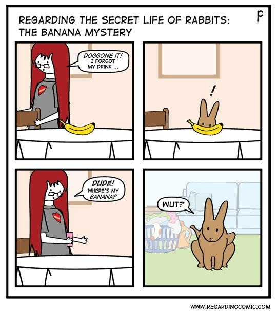 Cartoon - P REGARDING THE SECRET LIFE OF RABBITS: THE BANANA MYSTERY DOGGONE IT! I FORGOT MY DRINK DUDE! WHERE'S MY BANANA? WUT? WWw.REGARDINGCOMIC.COM
