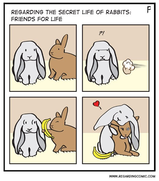 Cartoon - P REGARDING THE SECRET LIFE OF RABBITS FRIENDS FOR LIFE ?! WWw.REGARDINGCOMIC.COM