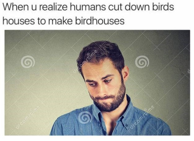 Funny meme about realizing birdhouses are made of birds houses (trees)