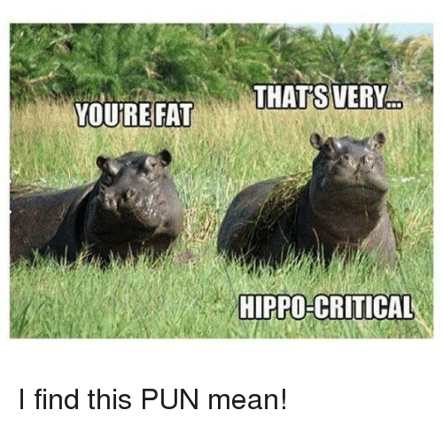 Mean pun of one hippo calling the other fat and by doing so being 'hippo-criticals'