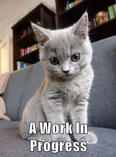 cat describes you in only four words as A WORK IN PROGRESS