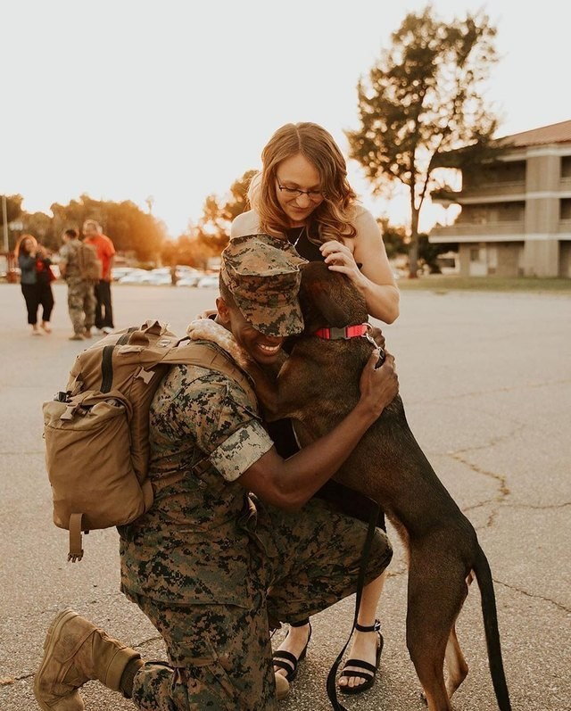 Soldiers reunited with dogs