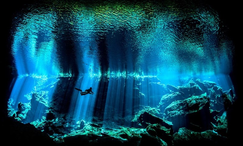 Amazing underwater picture of divers in the sea taken by Nick Blake