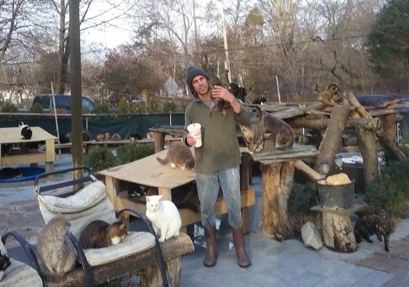 Chris Arsenault in his cat sanctuary.