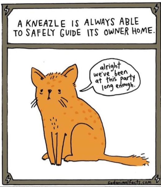 Cartoon - A KNEAZLE IS ALWAYS ABLE TO SAFELY GUIDE ITS OWNER HOME. alright we've been at fhis party long enongh Sadanimalfacts.cOm