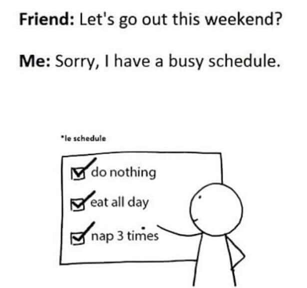 Meme about not hanging out with a friend because you have a busy schedule.