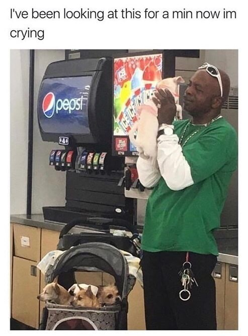 Cute meme of big tall black man with baby wagon full of cute puppies.