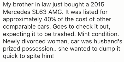 Text - My brother in law just bought a 2015 Mercedes SL63 AMG. It was listed for approximately 40% of the cost of other comparable cars. Goes to check it out, expecting it to be trashed. Mint condition. Newly divorced woman, car was husband's prized possession.. she wanted to dump it quick to spite him!