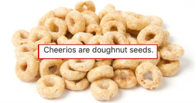 Cheerios are doughnut seeds - stuff people told kids