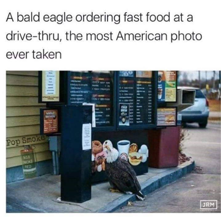 Funny meme about a bald eagle ordering from a drive through fast food restaurant.