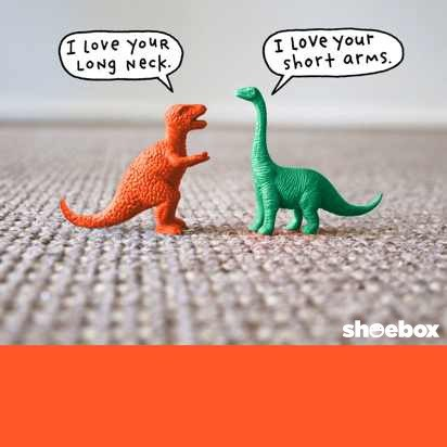T-rex and brontosaurus plastic toys complimenting each other.
