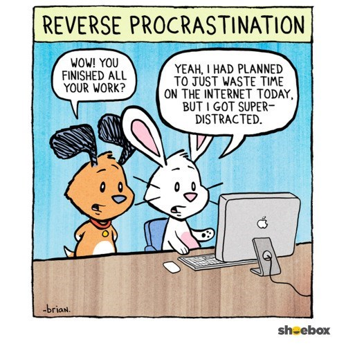 Rabbits cartoon about reverse procrastination