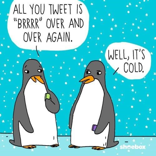 penguin complaining to another penguin that the tweet was just brr over and over again because it was cold.