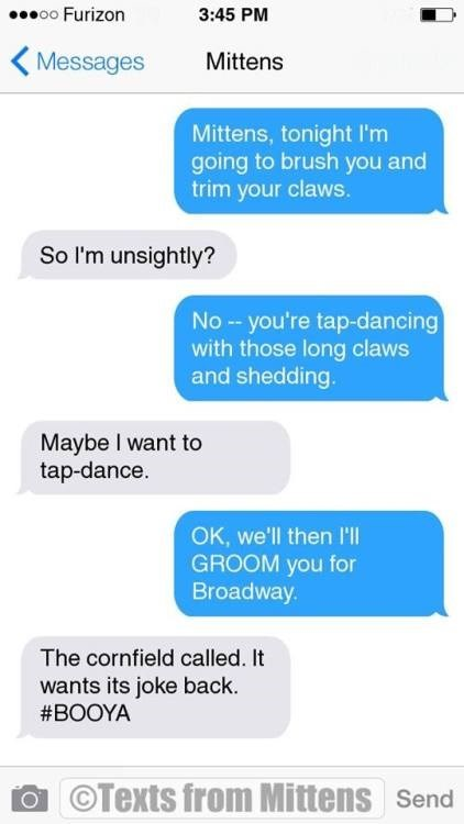 Cat and owner texting about plans to clean his fur tonight