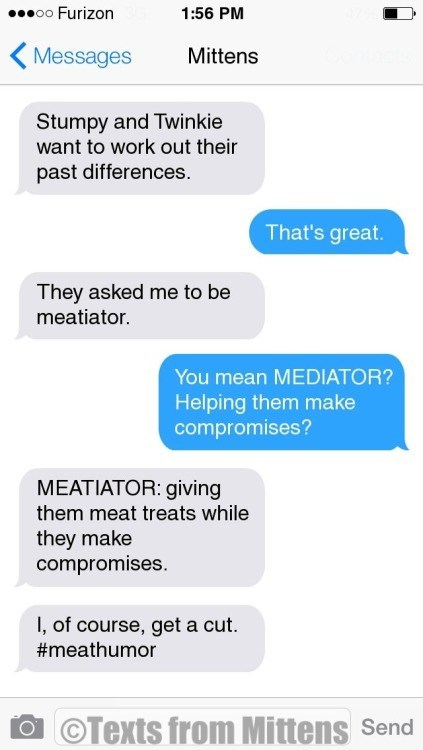 Text - o0 Furizon 1:56 PM Messages Mittens Stumpy and Twinkie want to work out their past differences. That's great. They asked me to be meatiator. You mean MEDIATOR? Helping them make compromises? MEATIATOR: giving them meat treats while they make compromises. , of course, get a cut #meathumor OTexts from Mittens Send