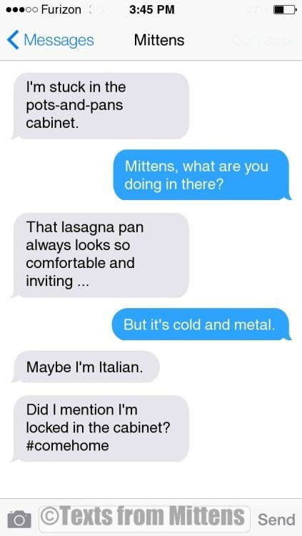 Text - o0 Furizon 3:45 PM Messages Mittens I'm stuck in the pots-and-pans cabinet. Mittens, what are you doing in there? That lasagna pan always looks so comfortable and inviting. But it's cold and metal. Maybe I'm Italian. Did I mention I'm locked in the cabinet? #comehome OTexts from Mittens Send
