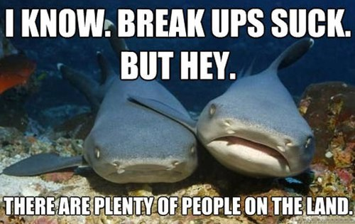 Fish - I KNOW: BREAK UPS SUCK. BUT HEY. THERE ARE PLENTYOF PEOPLE ON THE LAND