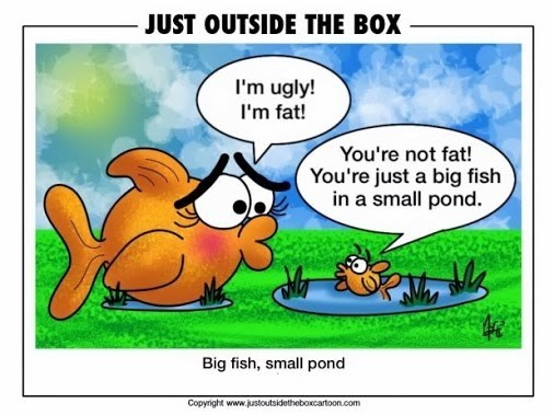 Cartoon - JUST OUTSIDE THE BOX I'm ugly! I'm fat! You're not fat! You're just a big fish in a small pond. Big fish, small pond Copyright www.justoutsidetheboxcartoon.com