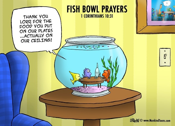 Cartoon - FISH BOWL PRAYERS 1 CORINTHIANS 10:31 THANK YOu LORD FOR THE FOOD YOU PUT ON OUR PLATES ...ACTUALLY ON OUR CEILING! BEOwww.MankindToons.com