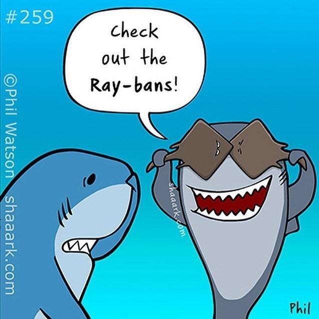 Cartoon - #259 check out the Ray-bans! Phil shaaarkcom OPhil Watson shaaark.com